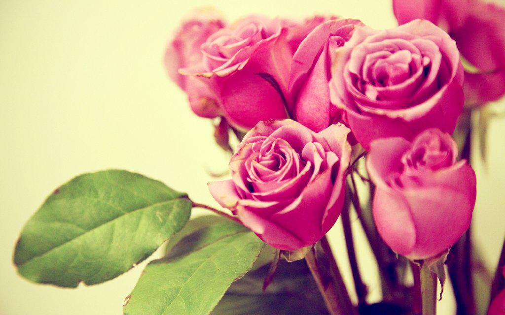Ретро картинки цветов 8