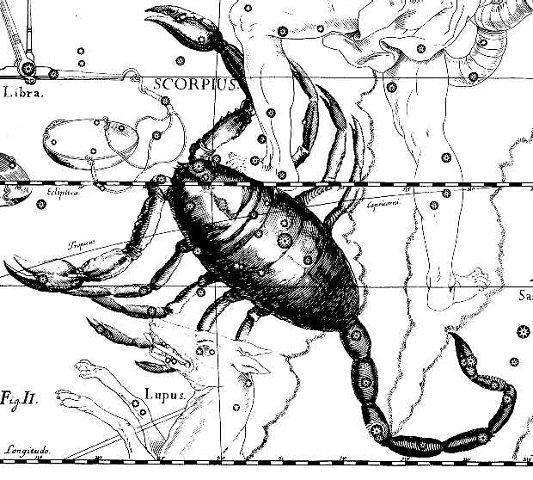 вся правда про скорпиона